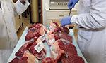 Influência da alimentação dos bovinos na qualidade da carne no Uruguai