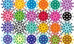 Eficácia da ação coletiva no enfrentamento ao novo coronavírus no Nordeste