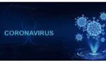 A resposta da administração pública brasileira aos desafios da pandemia da COVID-19