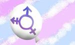 Quais os fatores associados à qualidade de vida de crianças e adolescentes transgêneros?